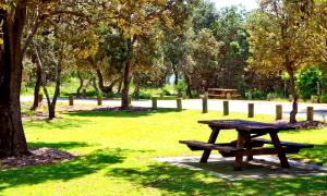 Parks Assessment