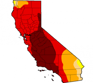 California draught