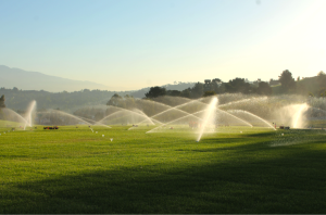Water Management California